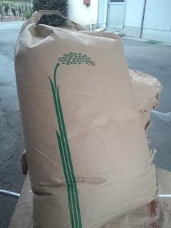 山梨県産 小麦粉