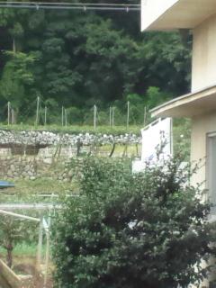 飯嶋製麺所 周辺